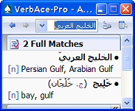 VerbAce-Pro Arabic-English (Lifetime License)
