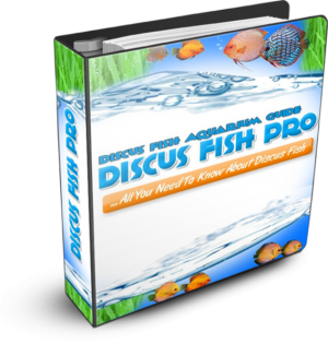 Discus Fish Pro : Discus Fish Aquarium Guide