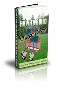 Building A Chicken Coop Videos, Ebook And Plans