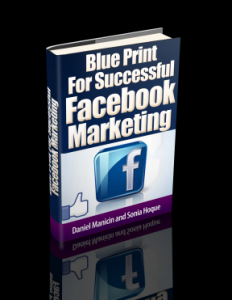 Blue Print For Successful Facebook Marketing