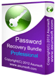 Asunsoft Password Recovery Bundle Professional
