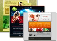 Special Offer Web Templates (Each Web Templates)