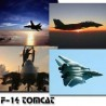 F-14 Tomcat Screensaver by 13-Soft