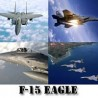 F-15 Strike Eagle Screensaver Gold Edition