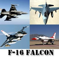 F-16 Falcon Screensaver Gold Edition