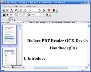 Radaee PDF Reader(OCX & Demo)