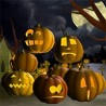 Discount Coupon for Scary Halloween 3D Screensaver 30% OFF !